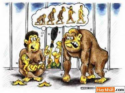 Sự tiến hóa của loài người qua các thời kỳ 3