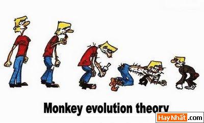 Sự tiến hóa của loài người qua các thời kỳ 4