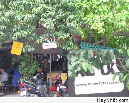 Chỉ có tại Việt Nam (Số 3) 2