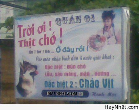 Chỉ có tại Việt Nam (Số 7) 1