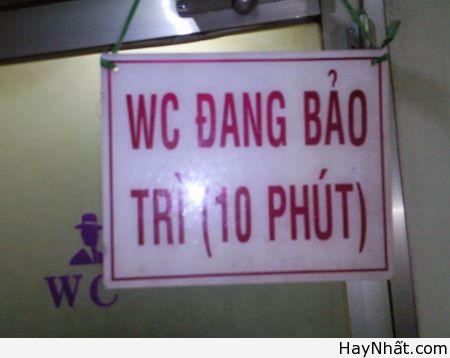 Chỉ có tại Việt Nam (Số 6) 1