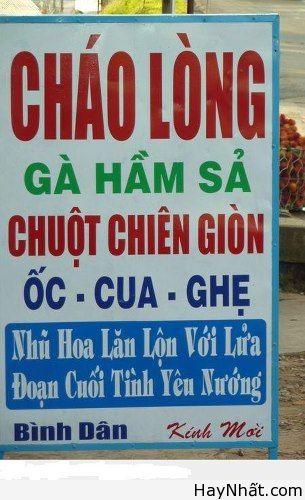 Phong ba bão táp trong Tiếng Việt 1