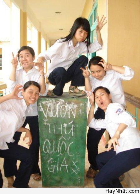 Chỉ có tại Việt Nam (Số 8) 5