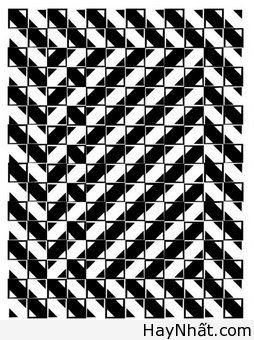 Bộ sưu tập hình ảnh gây ảo giác (P.2) 12