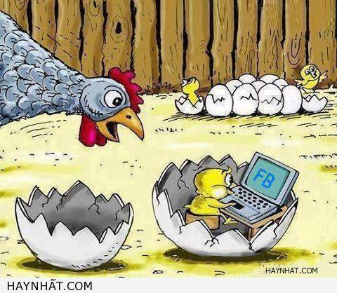 Nghiện từ trong trứng 1