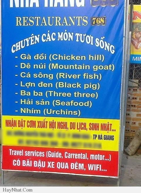 Dịch thuật rất hài hước và khó đỡ! 6