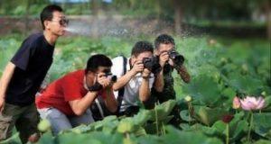 Nghệ thuật nhiếp ảnh